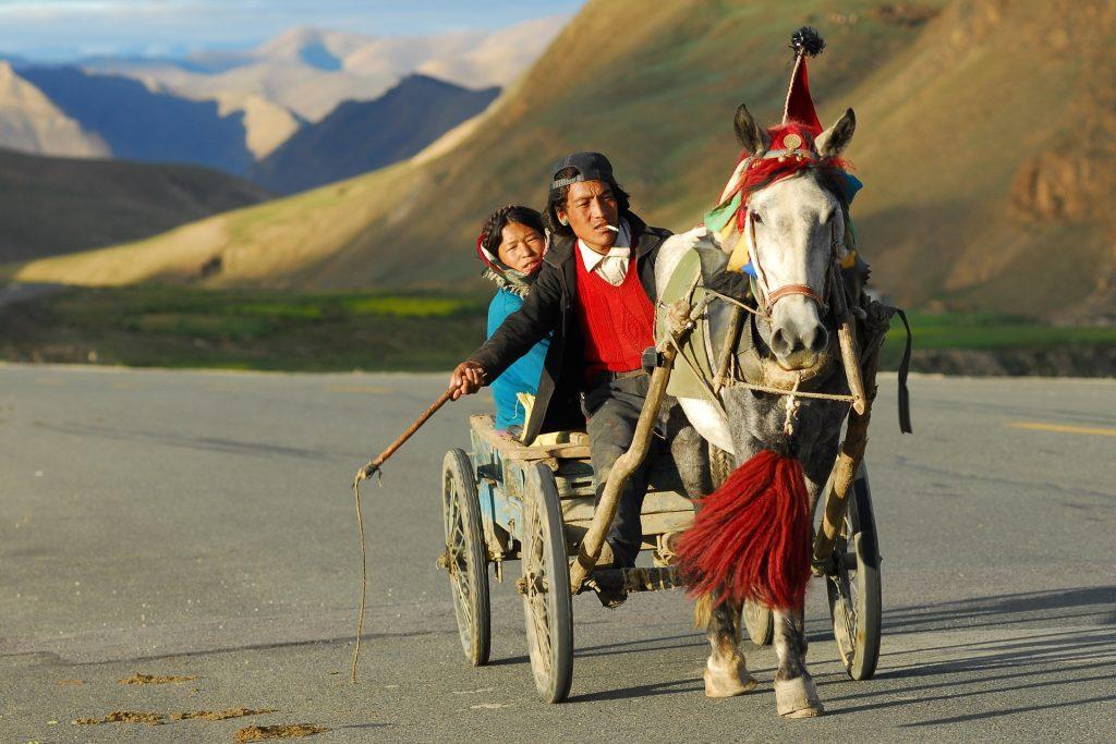 situacion tipica del tibet
