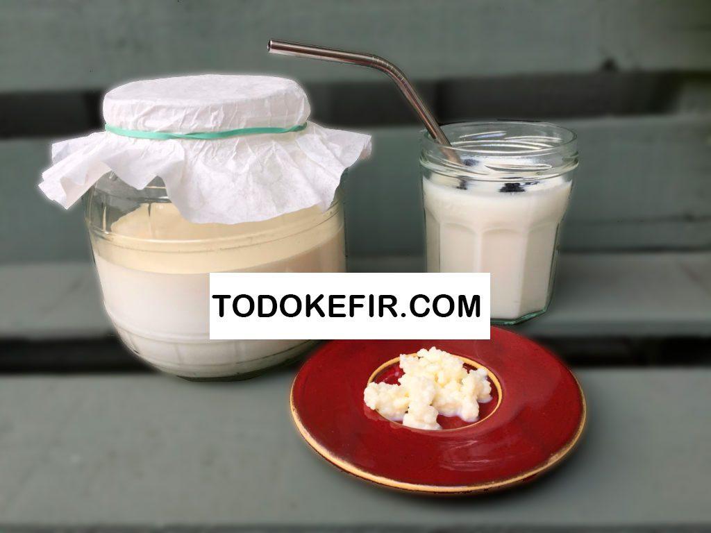 kefir de leche preparacion